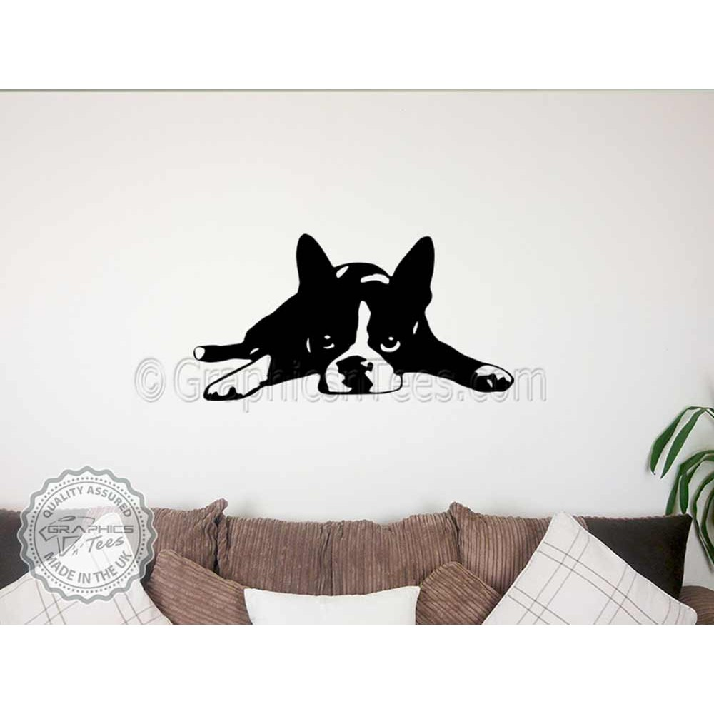 Boston Terrier Puppy Lying Down Wall Sticker Vinyl Mural