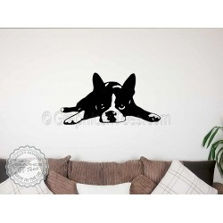 Boston Terrier Puppy Lying Down Wall Sticker, Vinyl Mural Decal