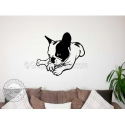 Cute French Bulldog Puppy,  Lying Down, Home  Wall Sticker, Vinyl Mural Decal